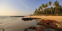 Morjim Beach,, Goa - Banyan Tree - Yoga on a Shoestring