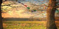 42 Acres - Somerset - yoga retreat - Yoga on a Shoestring