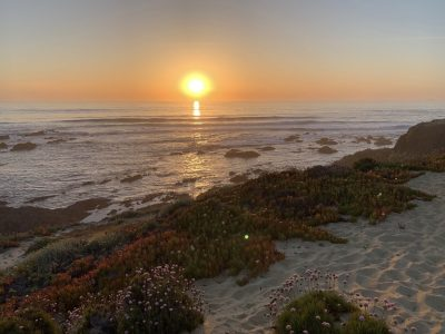 Cocoon, Atlantic coast, Portugal - YOAS - Yoga on a Shoestring retreat