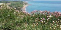 Bonhays retreat, Dorset - YOAS - Yoga on a Shoestring retreats